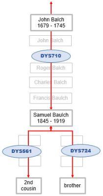 Baulch Y DNA mutations