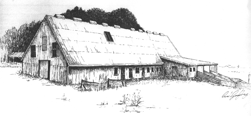 Dunmore wool shed